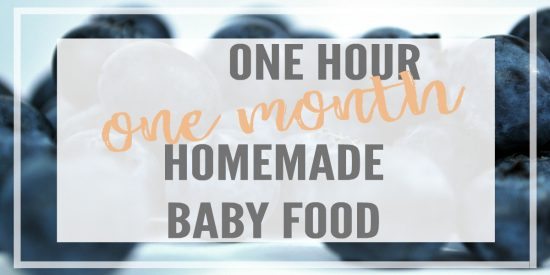 Homemade Baby Food Recipes Stage 1, Month Menu, Sample Menu, Meal Plan