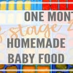 $20 for 1 Month of Stage 2 Homemade Baby Food- with Free Printable of 60 Recipes!