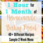 One Hour for One Month's Worth of Homemade Baby Food- with 40+ Stage 1 Recipes!