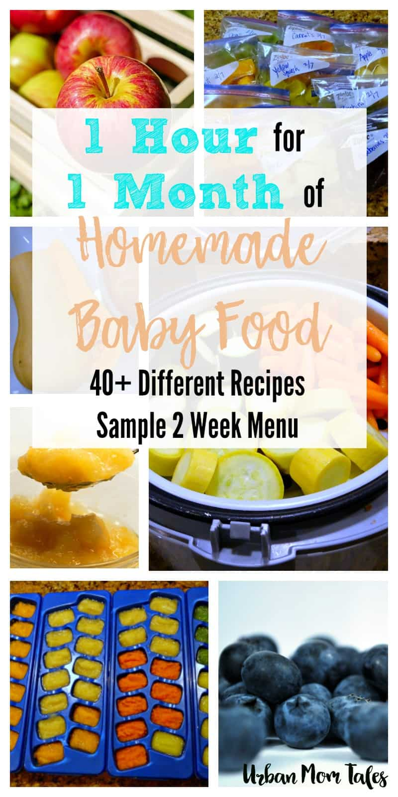 One Hour for One Month's Worth of Homemade Baby Food- with ...