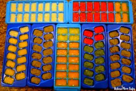 Baby Food Frozen in Ice Cube Trays