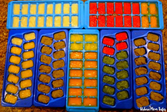 Stage 2 Homemade Baby Food Frozen in Ice Cube Trays