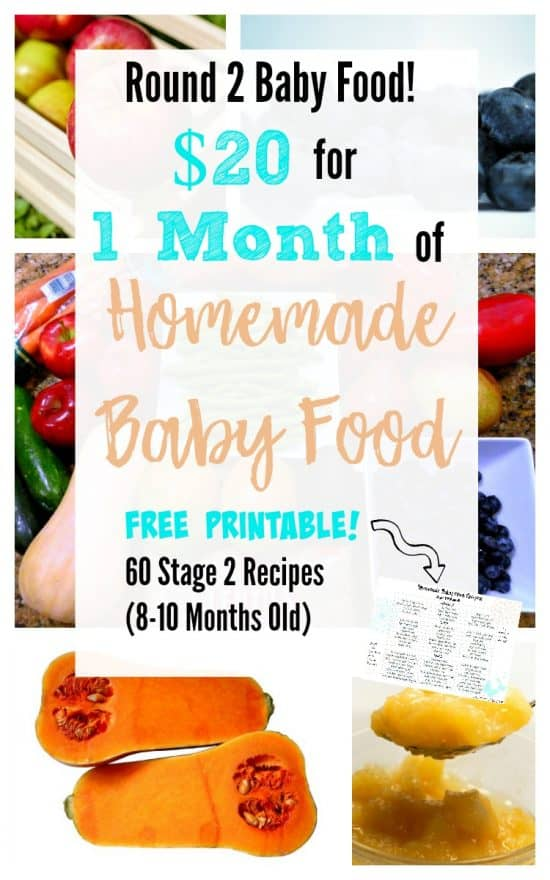 20 for 1 Month of Stage 2 Homemade Baby Food with Free Printable