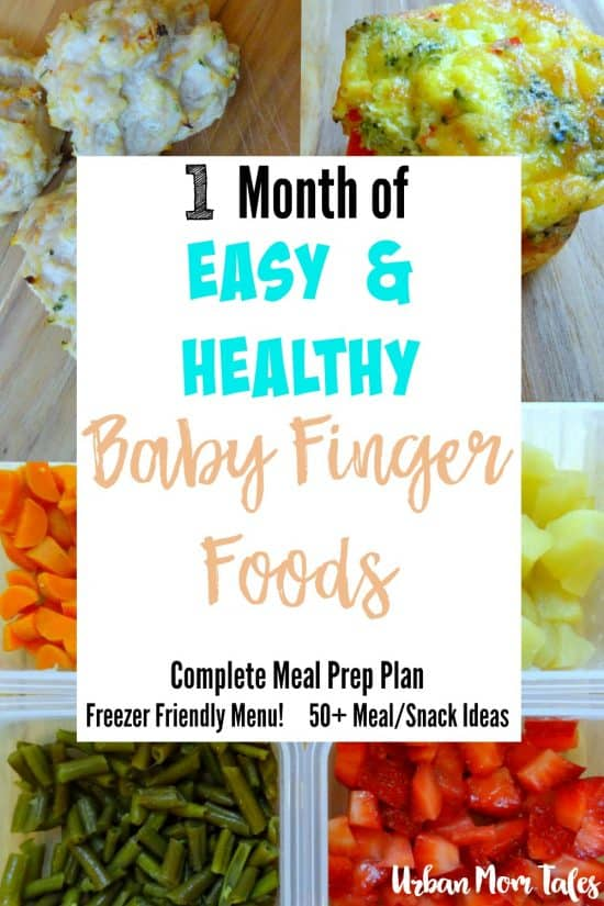 1 Month Of Easy Amp Healthy Baby Finger Food Recipes Meal