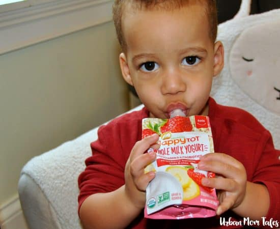 Quick Nutritious Breakfast Ideas For A One Year Old Urban Mom Tales