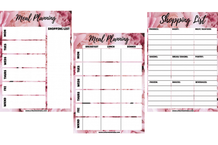 meal plan template versions