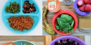 one year old meal plan with toddler menus