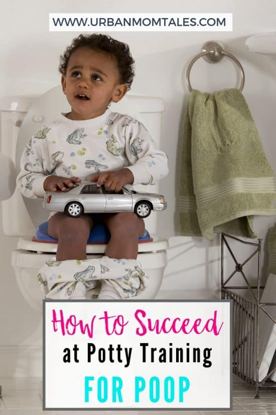 How to Succeed at Potty Training for Poop · Urban Mom Tales