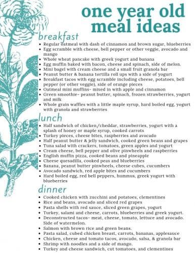 meal ideas for 1 year old menu